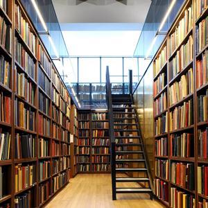 Библиотеки Горного
