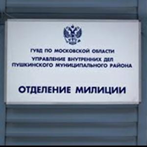 Отделения полиции Горного
